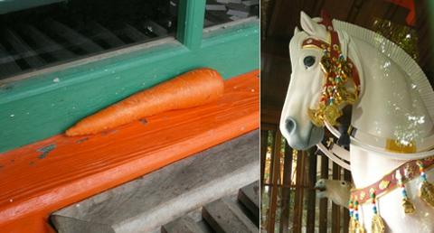 e_cheval.jpg